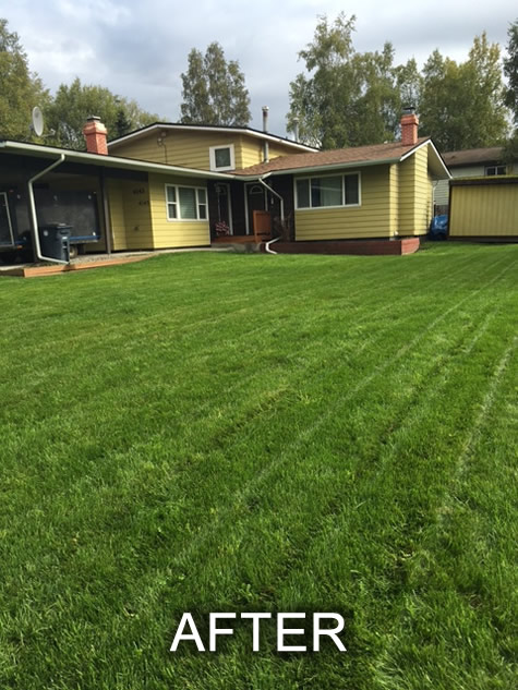 lawn install after